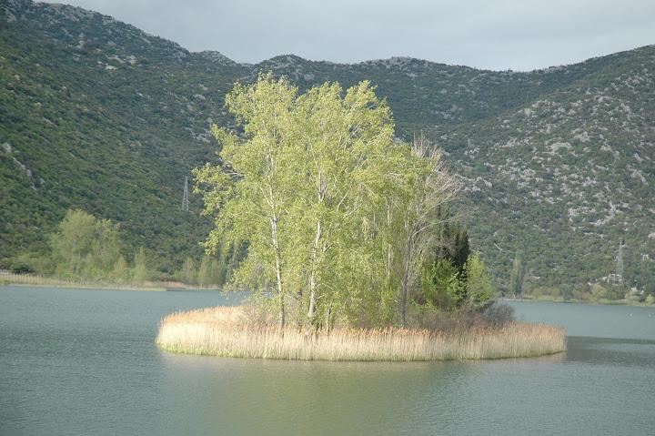 otok na rijeci